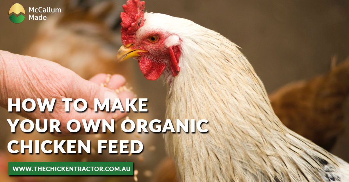 Make your own organic Feed