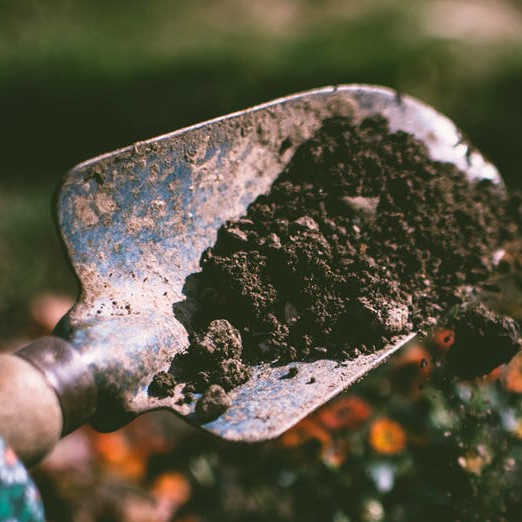Introducing The Ethics Of Permaculture