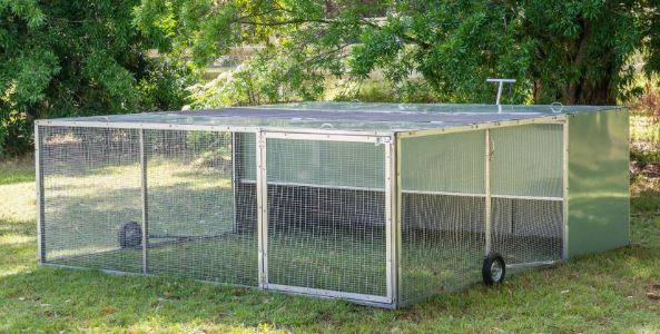 Keeping Chickens is easy inside a chicken tractor